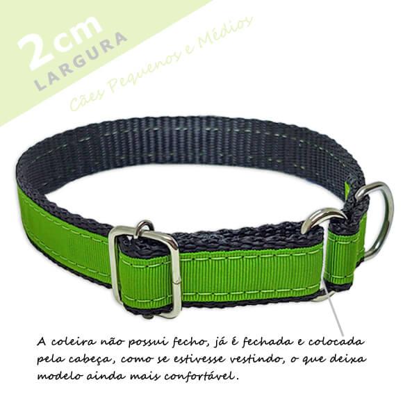 Coleira Identificação Personalizada Cachorro - Largura 2cm - PP / P / M  - PetPatuá | Coleiras e Tags para Identificação