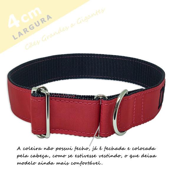 Coleira Identificação Personalizada Cachorro - Largura 4cm - G / GG  -  Grande Porte  - PetPatuá | Coleiras e Tags para Identificação
