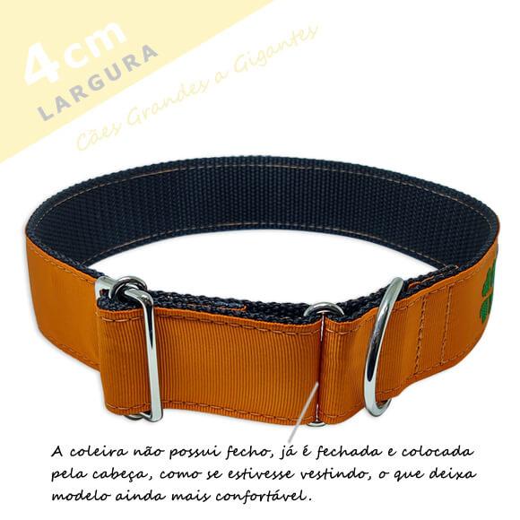 Coleira Identificação Personalizada Cachorro - Largura 4cm - G / GG - Icones - Grande Porte  - PetPatuá | Coleiras e Tags para Identificação