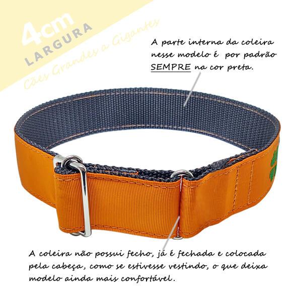 Coleira Identificação Personalizada Cachorro - Largura 4cm - Grande Porte - G1, G2, GG  - PetPatuá | Coleiras e Tags para Identificação