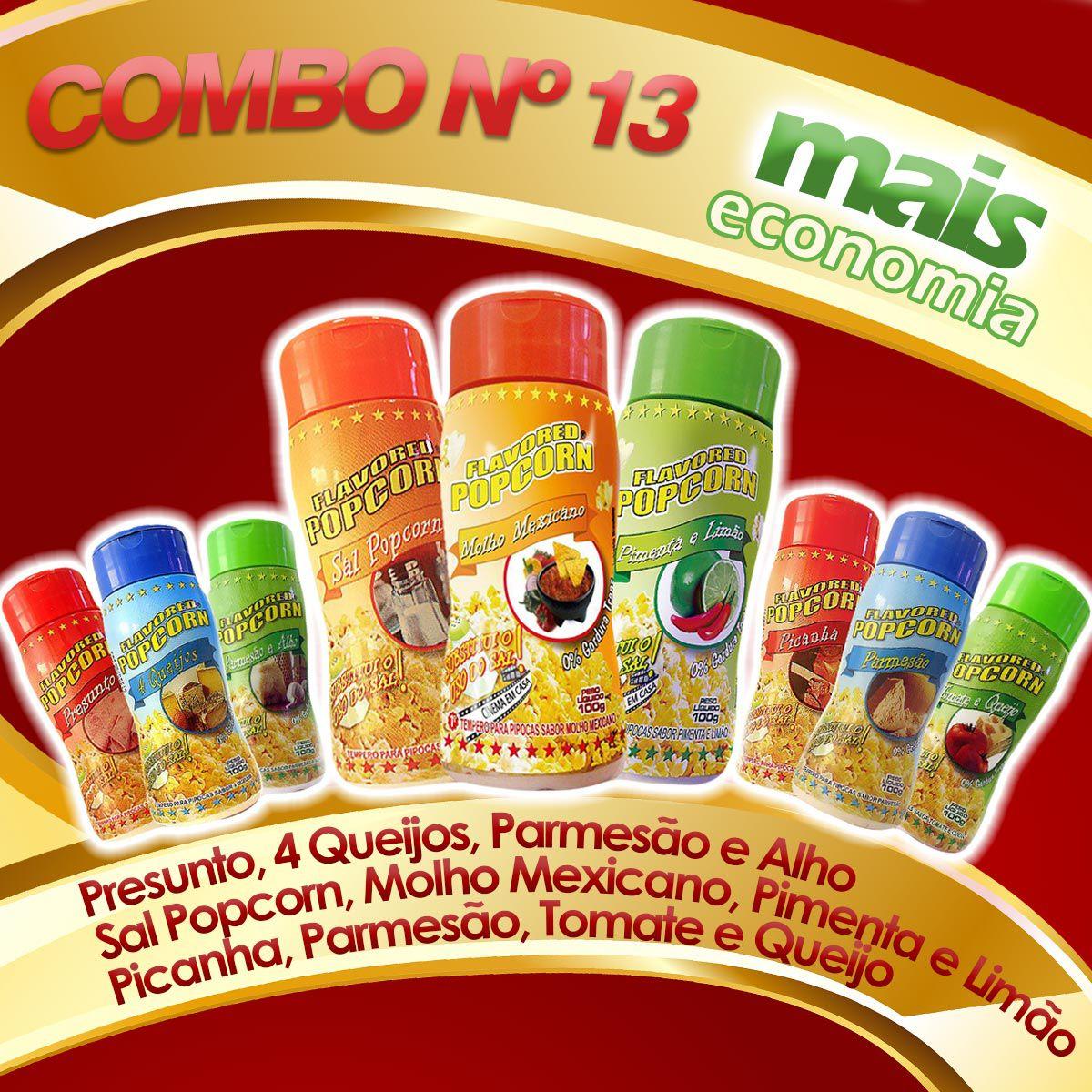 Combo Popcorn nº13 -  09 Temperos - Mais Economia - Parmesão, Picanha, Tomate e queijo, Quatro queijos, Presunto, Parmesão e Alho, Pimenta e limão, Molho mexicano, Sal Popcorn
