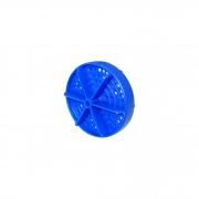Raia de Piscina Azul