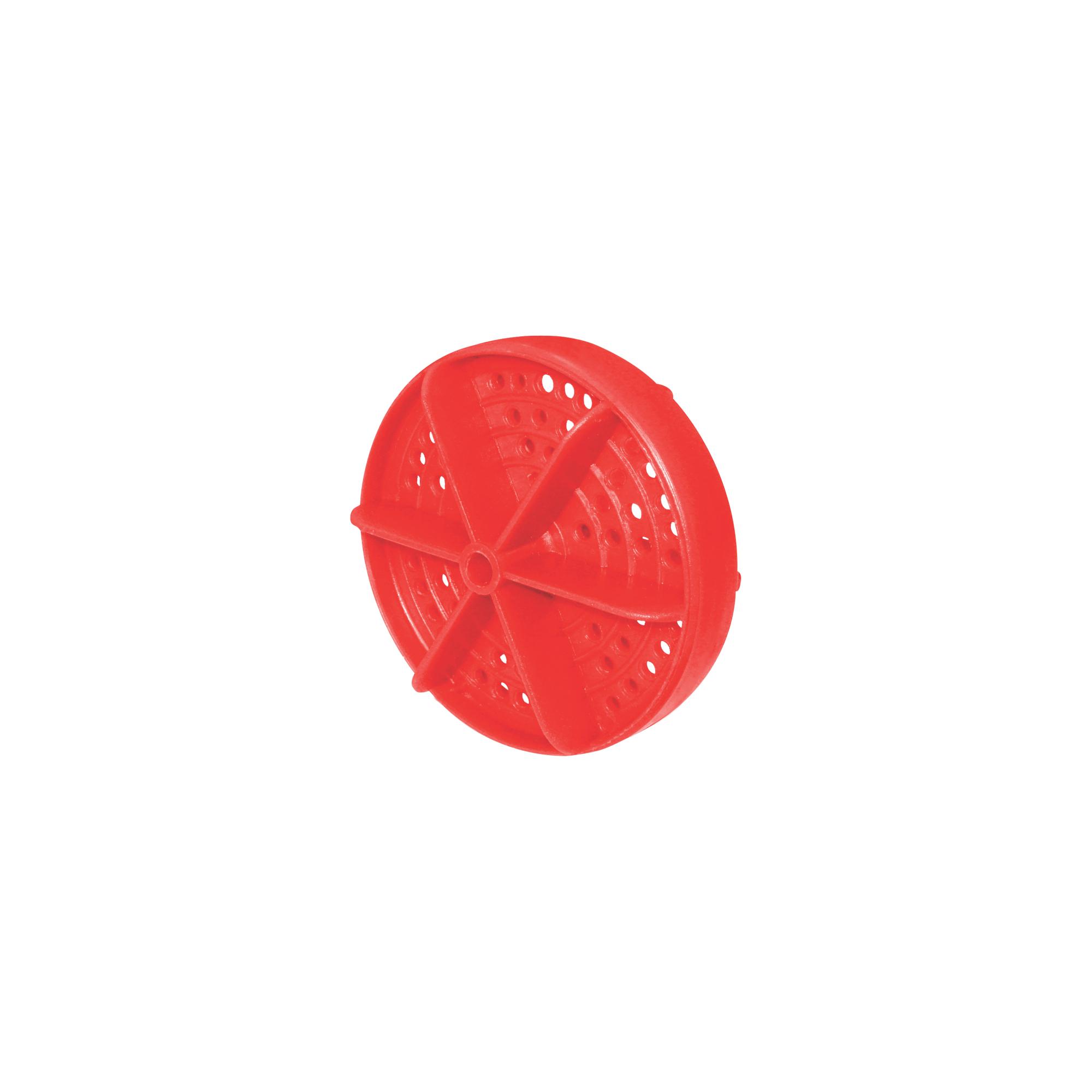 Raia de Piscina Vermelha
