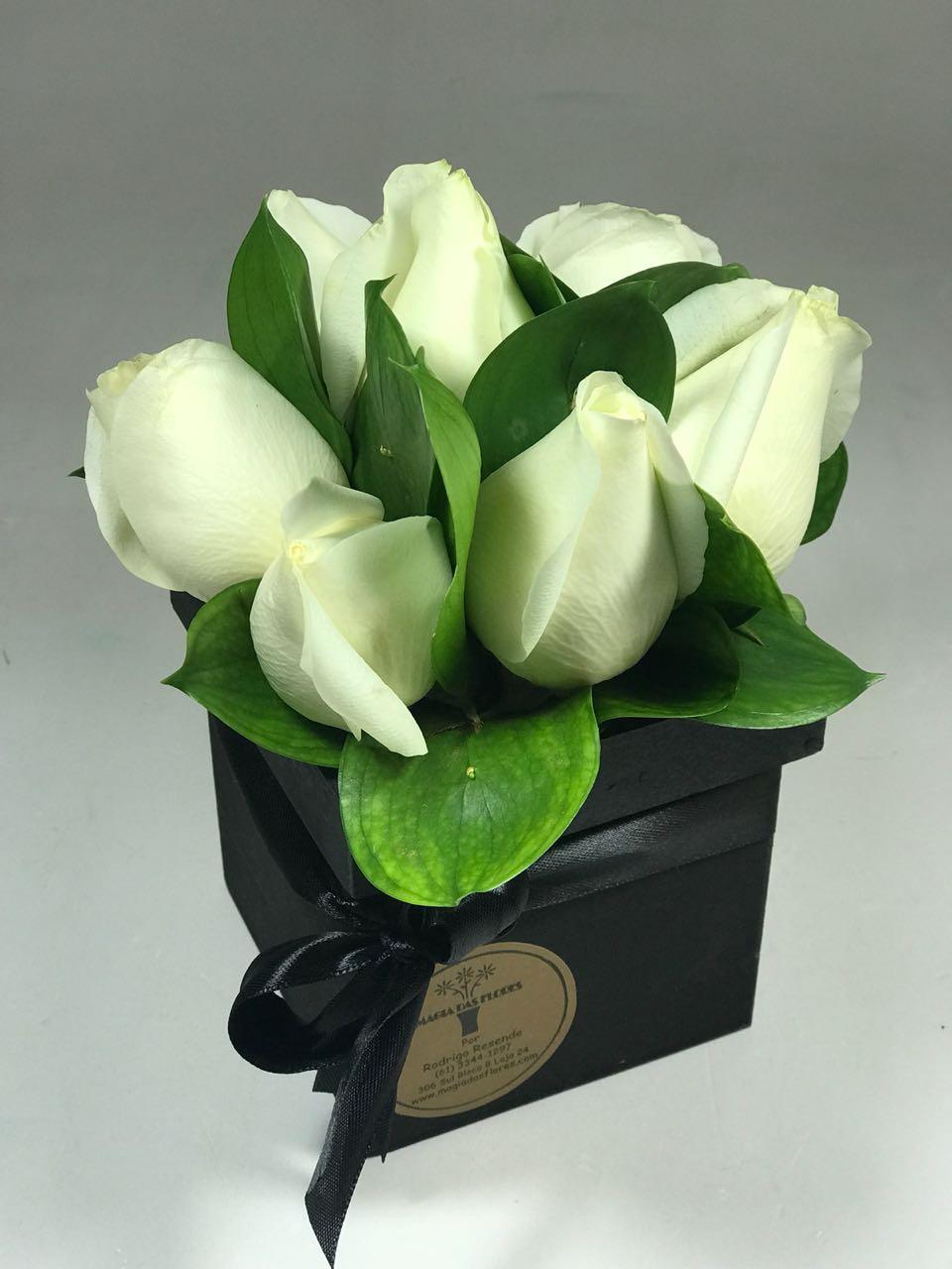 Box de rosas brancas