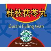 Guizhi Fuling Wan 350mg 60 cápsulas - Panizza