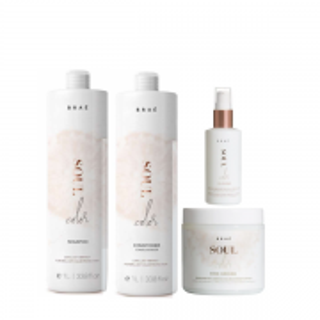 BRAÉ Soul Color - Shampoo+Condicionador 1L+Mascara 500g+Oil Blend 60ml