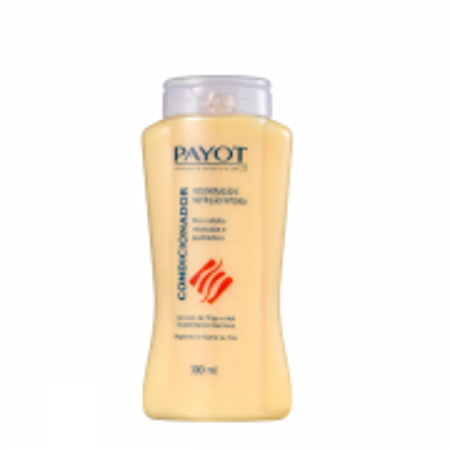 Payot Gérmen de Trigo e Mel - Condicionador 300ml