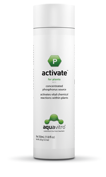 AquaVitro Activate  - Aquário Estilos