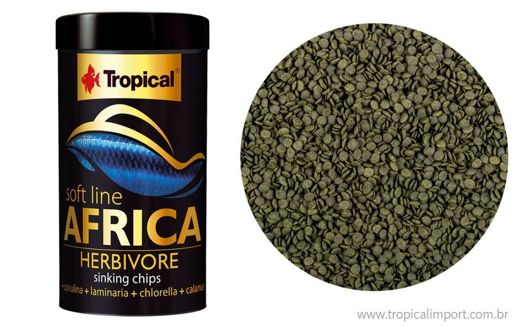 Tropical Soft Line Africa Herbivore  - Aquário Estilos