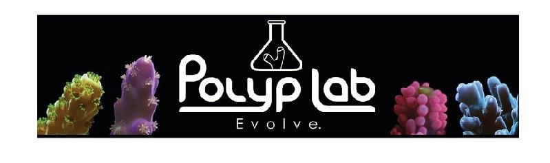 POLYP-BOOSTER Polyp Lab 100mL  - Aquário Estilos