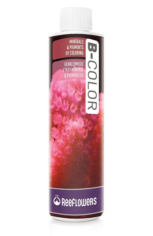 ReeFlowers B-Color  - Aquário Estilos