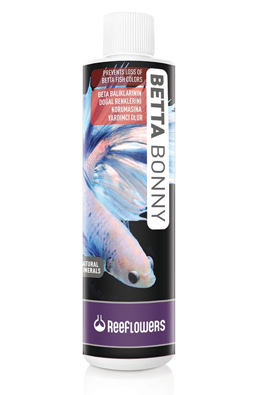Reeflowers BettaBonny  - Aquário Estilos