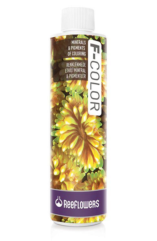 ReeFlowers F-Color  - Aquário Estilos