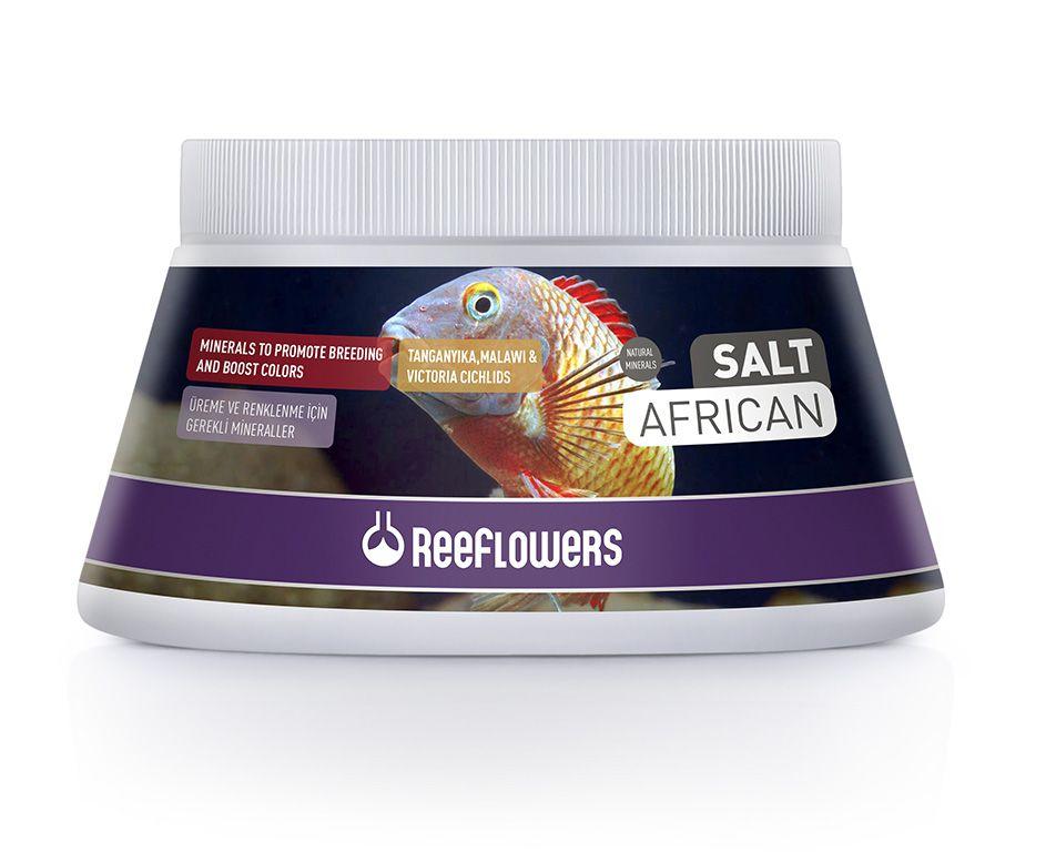 Reeflowers Salt African  - Aquário Estilos