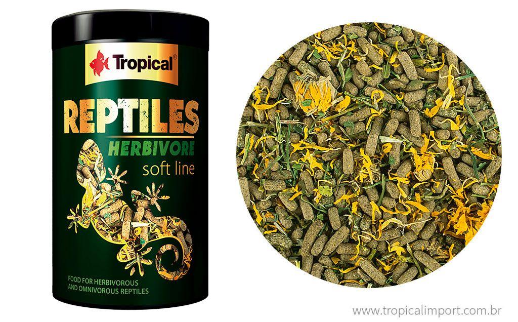 Soft Line Reptiles Herbivore  - Aquário Estilos