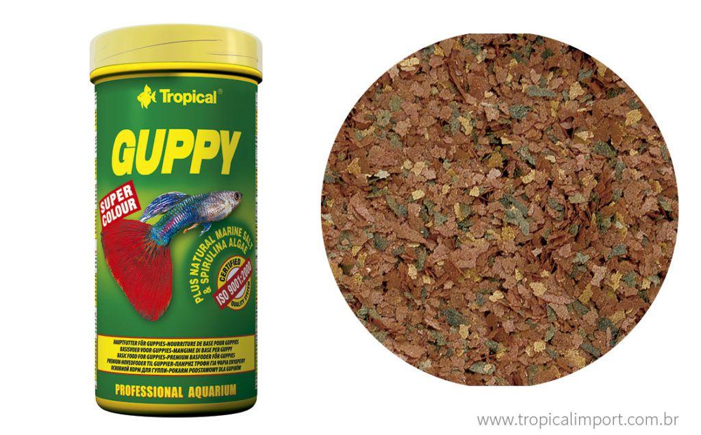 Tropical Guppy  - Aquário Estilos