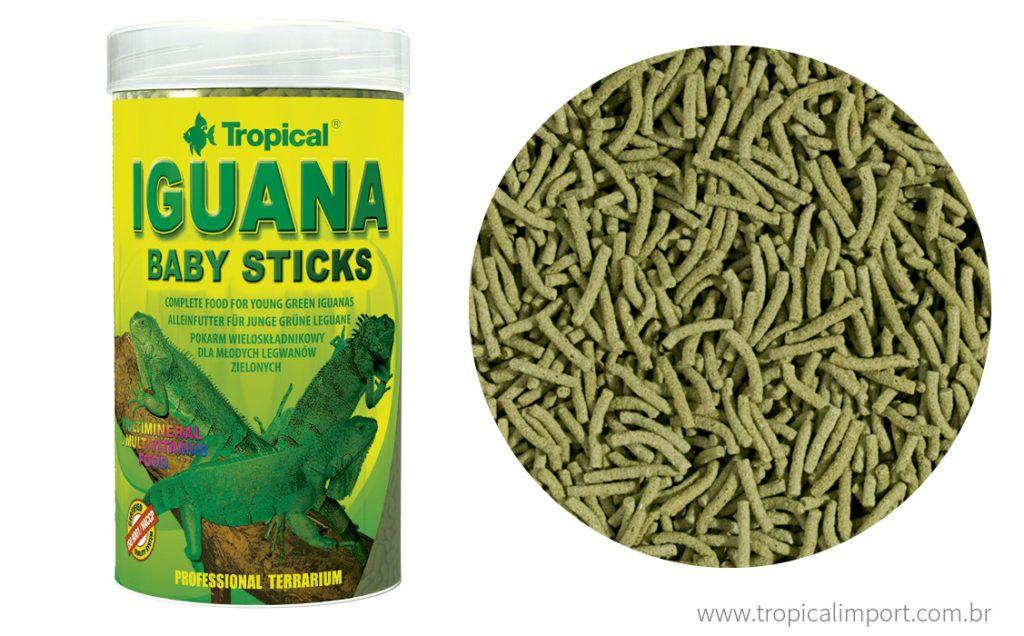 Tropical Iguana baby Sticks  - Aquário Estilos