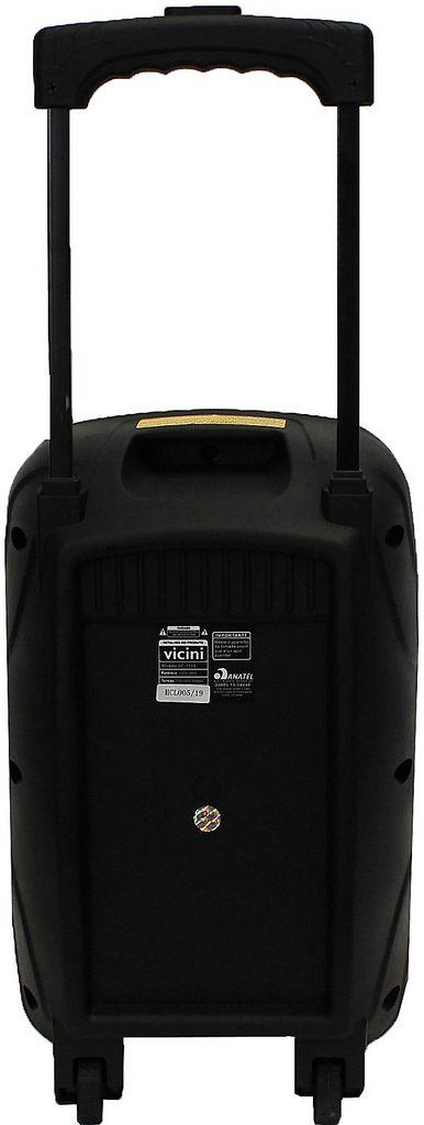 Caixa De Som Amplificada Rodinha Bluetooth Rádio Fm Usb Sd Saída Auxiliar 100W Bivolt Vicini VC-7101