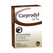 Anti-Inflamatório Ceva Carprodyl para Cães 100mg