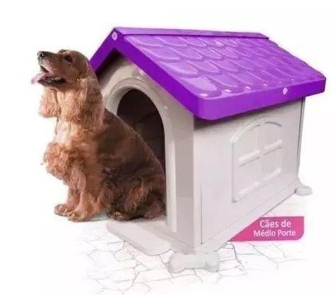 Casa Plastica Desmontável  Pet Injet N3 Lilás