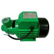 Bomba dágua Periférica Centrífuga 1/2 Hp - Irrigação - Amanco 110v
