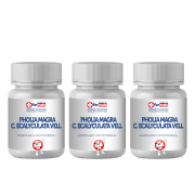 PHOLIA MAGRA - C. ECALYCULATA VELL 150 MG - 3 POTES 30 CPS