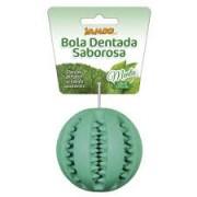 Brinquedo para Cachorro Bola Dentada Sabor Menta - Grande