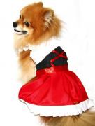 Fantasia para Cachorro Frida