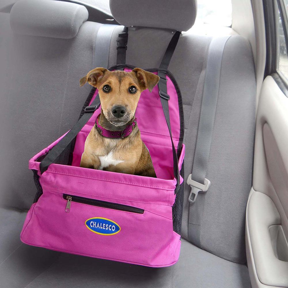 Cadeirinha de carro para Cães e Gatos - Chalesco