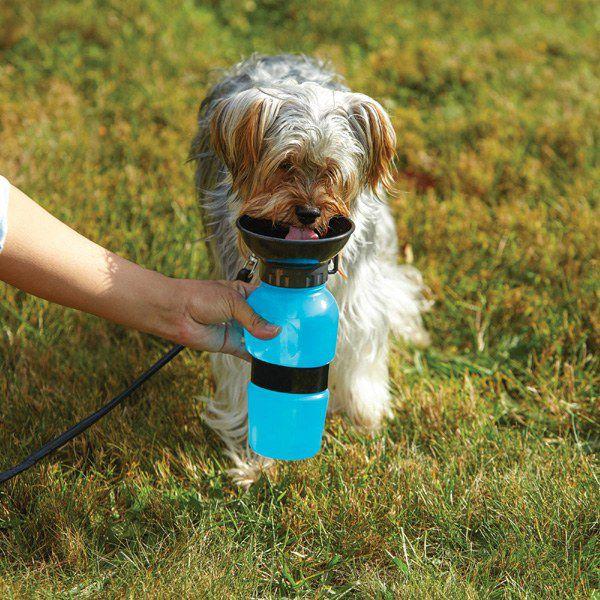 Bebedouro Portátil Água Dog