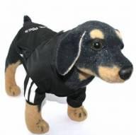 Blusa de Moletom para Cachorro Caninas