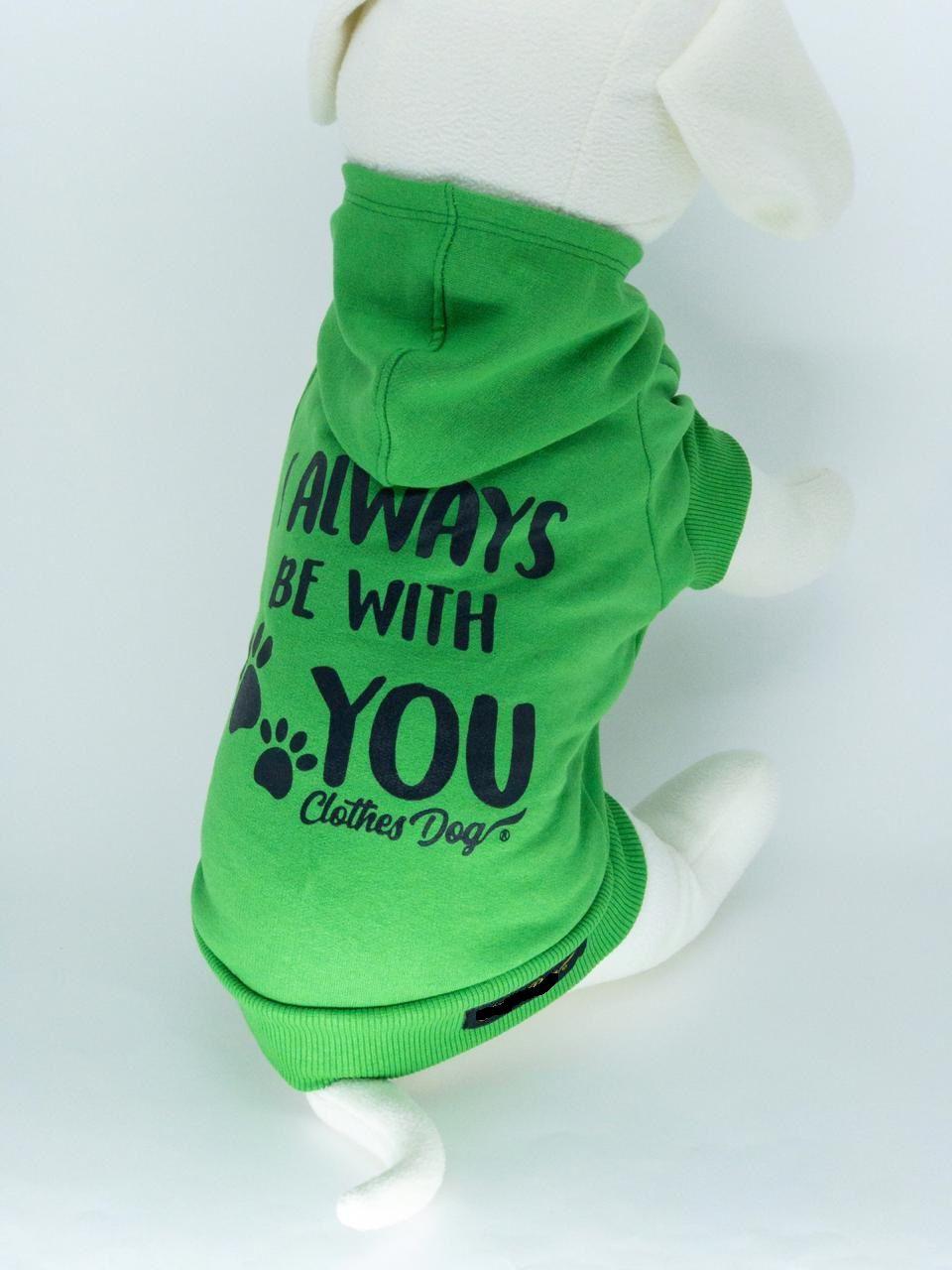 Blusa de Moletom para Cachorro Always- Verde