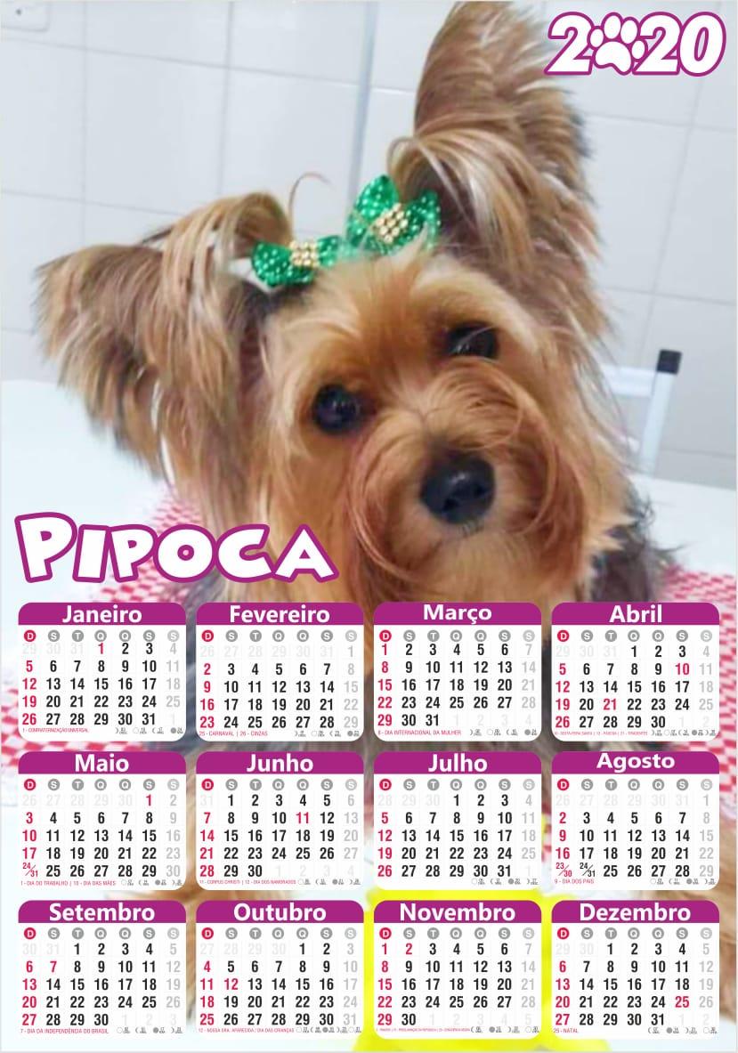 Calendário Personalizado com Fotos