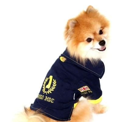 Camisa Polo para Cachorro UK- Yellow