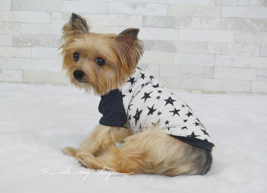 Camiseta para Cachorro-  Estrela Snow