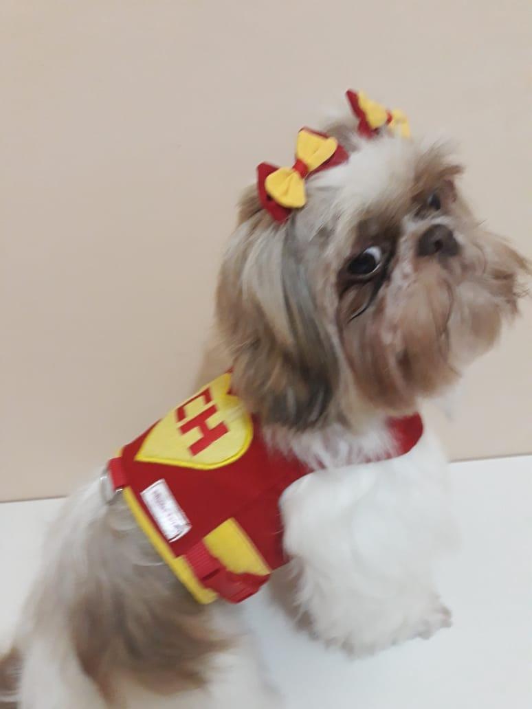 Coleira Peitoral para Cachorro Chapolin