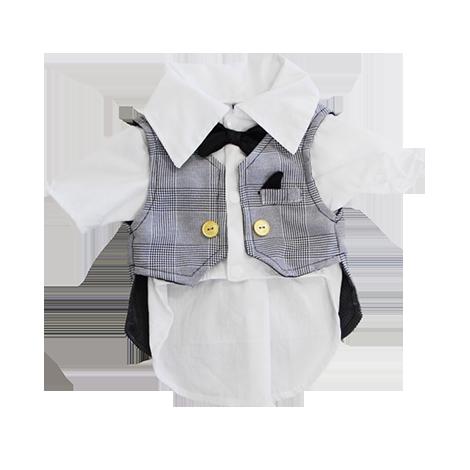 Colete c/ camisa Principe de Gales
