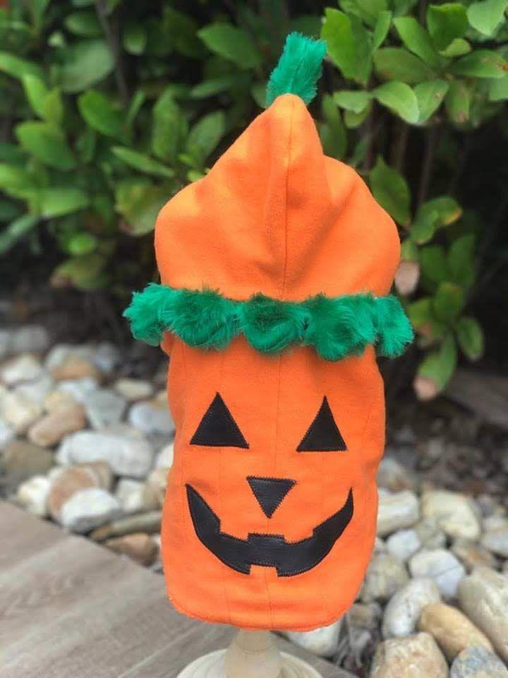 Fantasia para Cachorro Abóbora Halloween