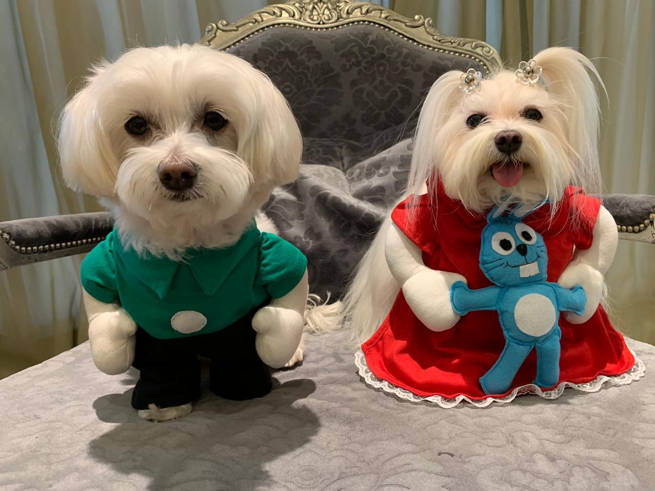 Fantasia para Cachorro Cebolinha - Turma da Mônica Bracinhos