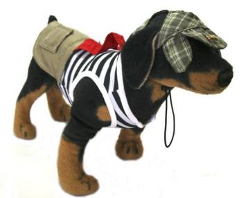Fantasia para Cachorro Chaves