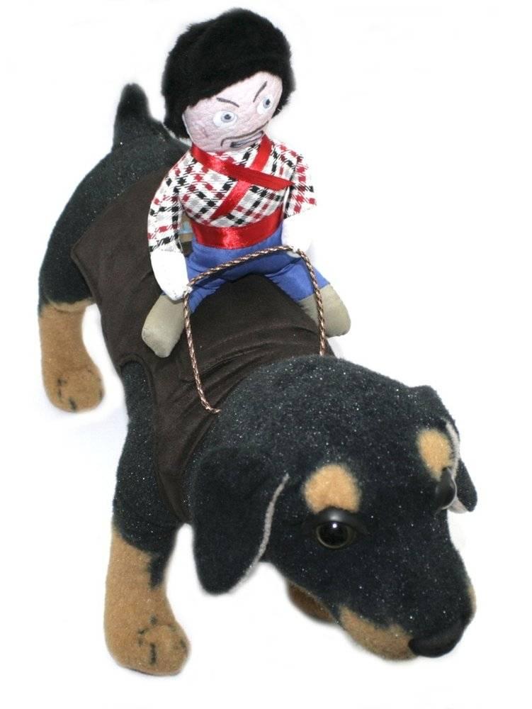 Fantasia para Cachorro Cowboy