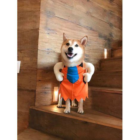 Fantasia para Cachorro Fred Flintstone - Bracinhos