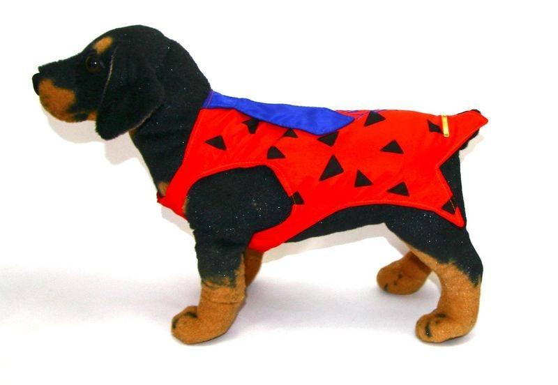 Fantasia para Cachorro Fred Flintstone