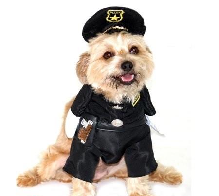 Fantasia para Cachorro Policial - Bracinhos