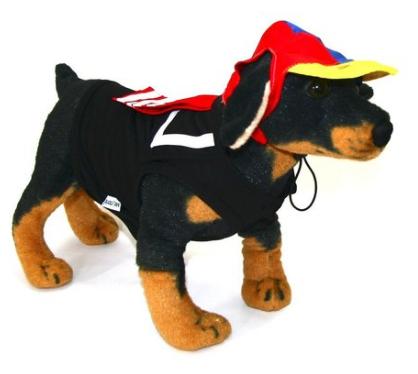 Fantasia para Cachorro Kiko - Chaves