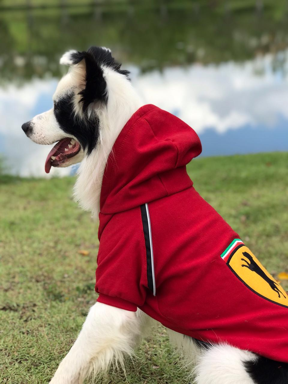 Moletom para Cachorro Ferrari