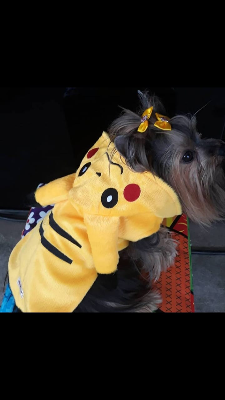 Roupa para Cachorro Pikachu