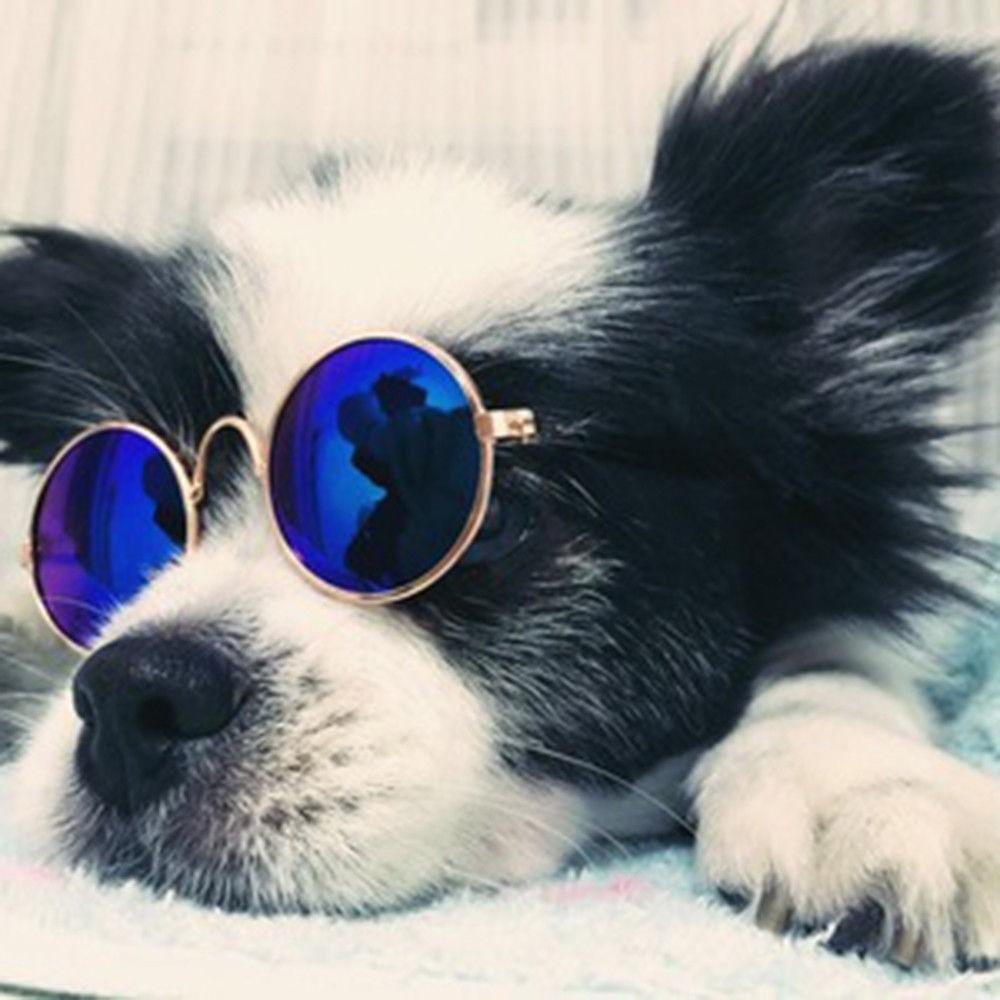 Óculos de Sol com Lente Azul Espelhado