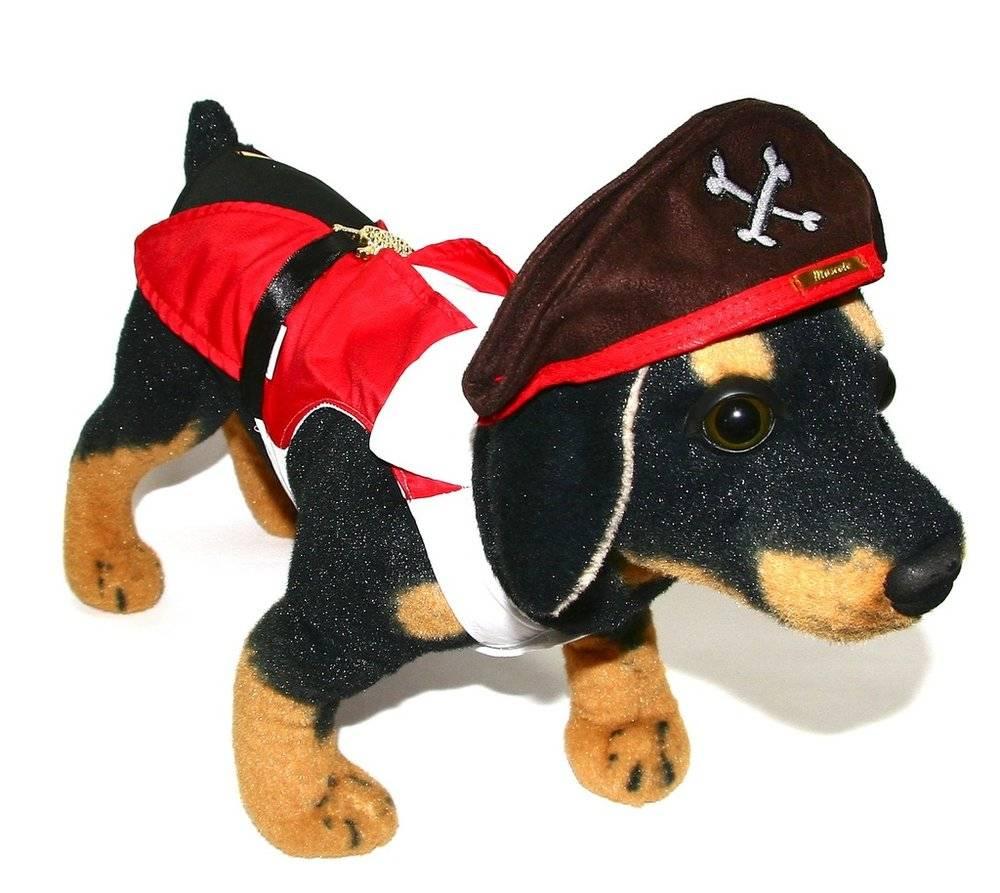 Fantasia para Cachorro Pirata - Macho