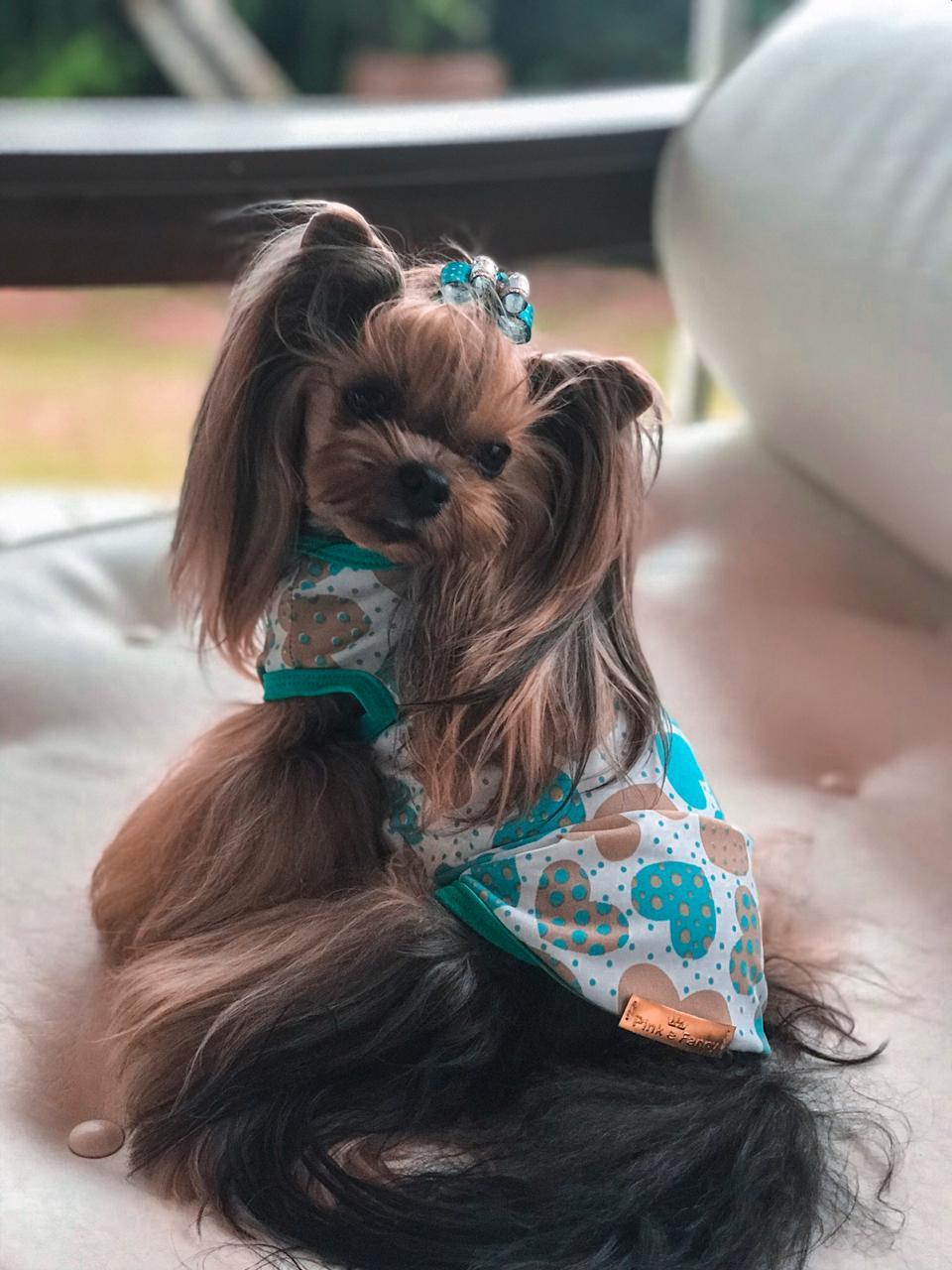 Camiseta para Cachorro Básica Coração Verde